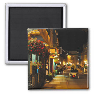 Rue St. Louis Horse Drawn Carriage Quebec Magnet