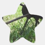 Rueda de carro colcomanias forma de estrella