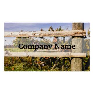 Ruedas de madera viejas, fotografía rural tarjetas de visita