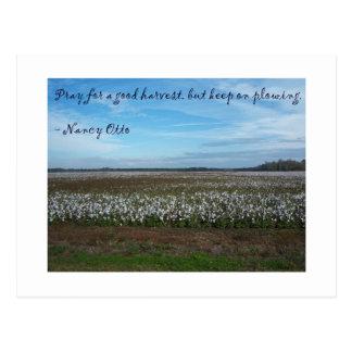 Ruegue para la buena cosecha. .by Nancy Ottis Postales