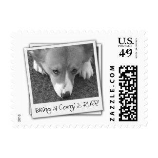 Ruff Life Corgi Postage Stamp