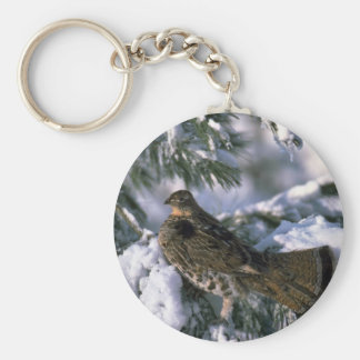 Ruffed grouse perched in a snowy tree basic round button keychain