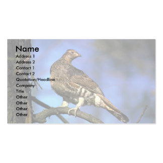 Ruffed Grouse perched on tree limb Double-Sided Standard Business Cards (Pack Of 100)