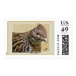 Ruffed Grouse Postage Stamps