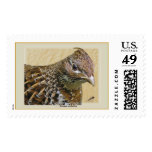 Ruffed Grouse Postage Stamp