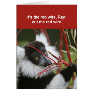 Ruffed lemur card
