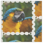 Ruffled Blue and Gold Macaw Fabric