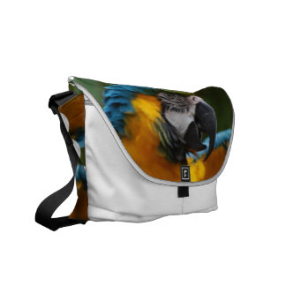 Ruffled Blue and Gold Macaw Messenger Bag