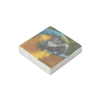 Ruffled Blue and Gold Macaw Stone Magnet