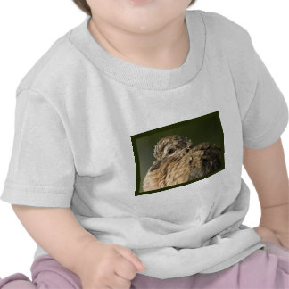 Ruffled Feathers T Shirts