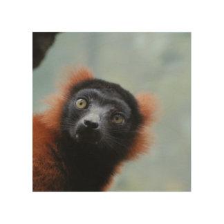 ruffled-lemur-6.jpg impresiones en madera