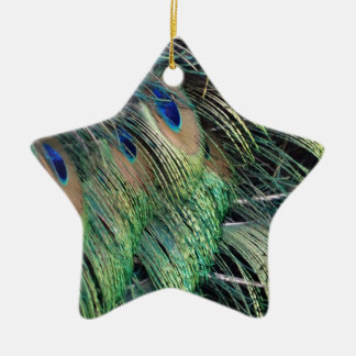 Ruffled Peacock Feathers With New Growth Ceramic Ornament