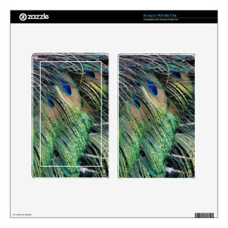 Ruffled Peacock Feathers With New Growth Decal For Kindle Fire