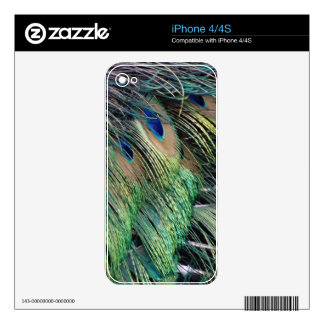 Ruffled Peacock Feathers With New Growth Skin For iPhone 4S