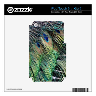 Ruffled Peacock Feathers With New Growth Skins For iPod Touch 4G