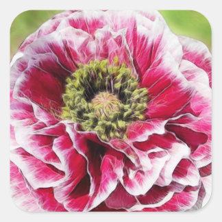 Ruffled Poppy - Rich Rose Square Sticker