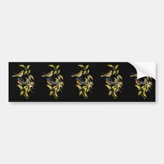 Rufous-bellied Niltava Bumper Sticker
