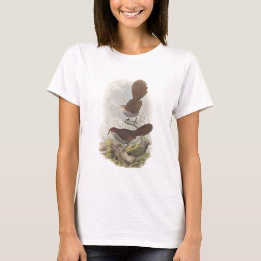 Rufous Bristle-bird T-Shirt