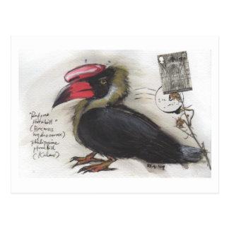 Rufous Hornbill Sketch by Sia Postcard