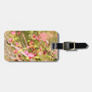 Rufous Hummingbird and Flowers Luggage Tag