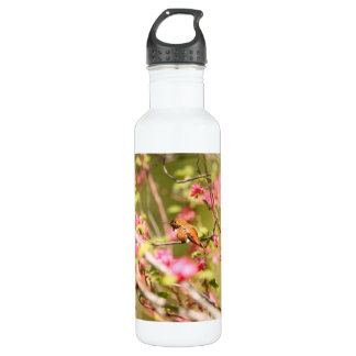 Rufous Hummingbird and Flowers Water Bottle
