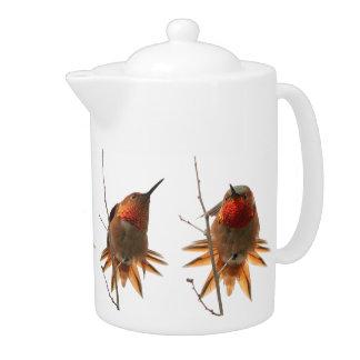 Rufous Hummingbird Bird Wildlife Animal Teapot