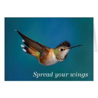 Rufous Hummingbird Card