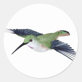 Rufous Hummingbird Classic Round Sticker