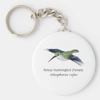 Rufous Hummingbird female with Name Keychain