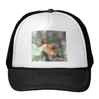 Rufous Hummingbird Trucker Hat