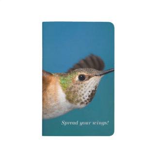 Rufous Hummingbird Journal