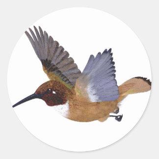 Rufous Hummingbird Male Classic Round Sticker