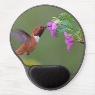 Rufous Hummingbird on Wild Rose Gel Mouse Pad