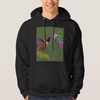 Rufous Hummingbird on Wild Rose Hoodie