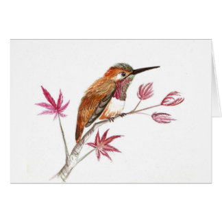 Rufous Hummingbird perching Card