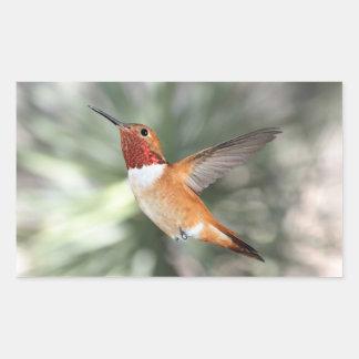 Rufous Hummingbird Rectangular Sticker