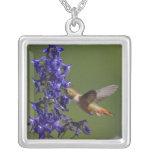 Rufous Hummingbird, Selasphorus rufus, female Square Pendant Necklace