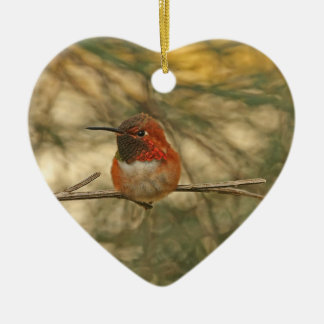 Rufous Hummingbird Sitting Ceramic Ornament