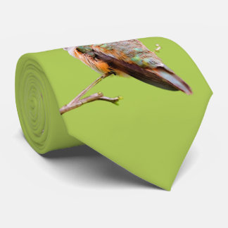 Rufous Hummingbird Sitting in the California Lilac Neck Tie