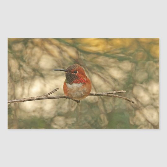 Rufous Hummingbird Sitting Rectangular Sticker