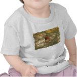 Rufous Hummingbird Sitting T-shirt