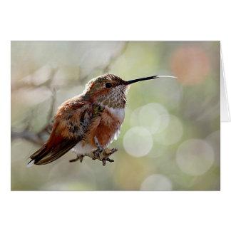 Rufous Hummingbird Tounge Card