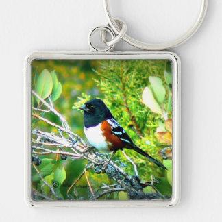 Rufous Sided Towhee Sparrow Keychain