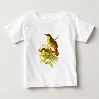 Rufous-vented Laughingthrush Baby T-Shirt