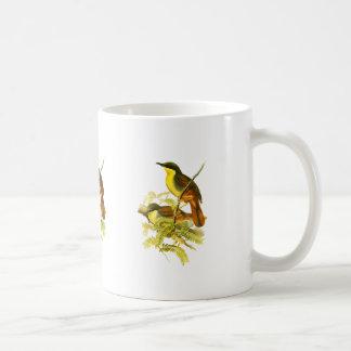 Rufous-vented Laughingthrush Coffee Mug