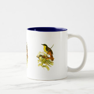 Rufous-vented Laughingthrush Two-Tone Coffee Mug