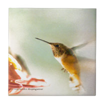 Rufus Hummingbird Ceramic Tile