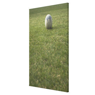 Rugby ball canvas print