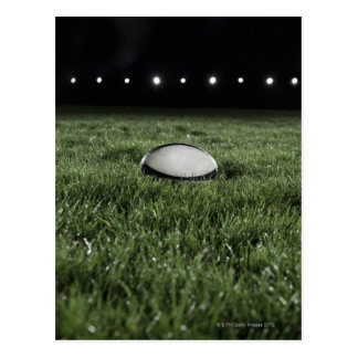 Rugby ball sitting on the grass pitch of a postcard