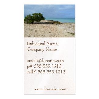 Rugged Aruba Business Card